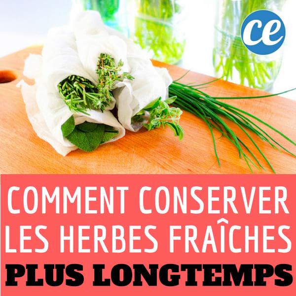 L 39 astuce infaillible pour conserver vos herbes aromatiques pendant 3 semaines - Comment conserver du basilic ...