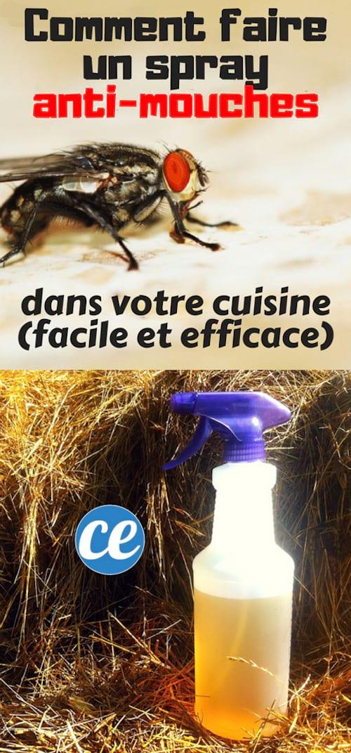 Comment faire un spray anti-mouches efficace fait maison