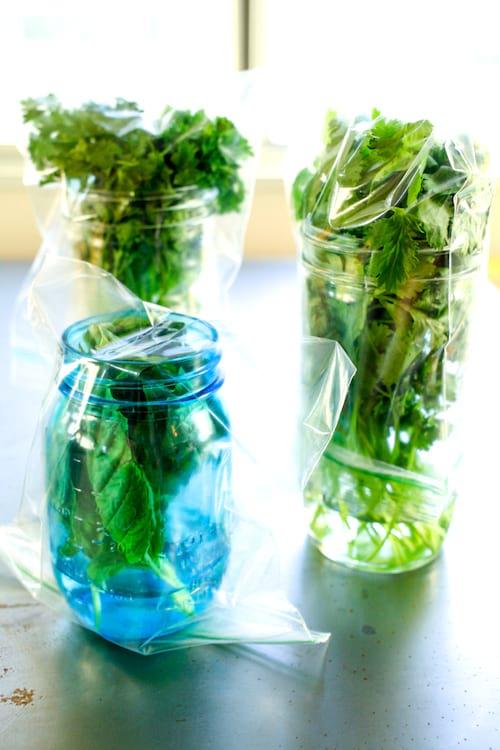 Des herbes fines tendres conservées dans des bocaux.