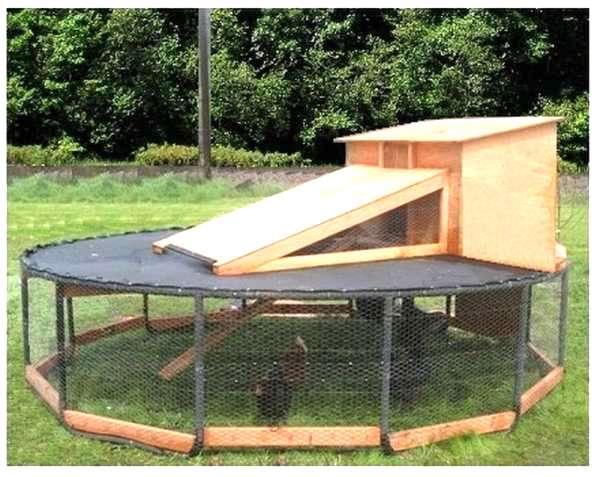 poulailler original avec ancien trampoline