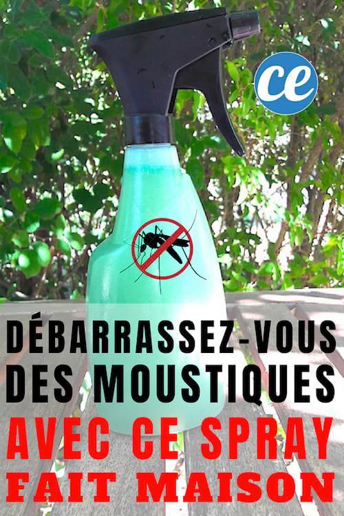 d barrassez vous des moustiques dans le jardin avec ce spray fait maison. Black Bedroom Furniture Sets. Home Design Ideas