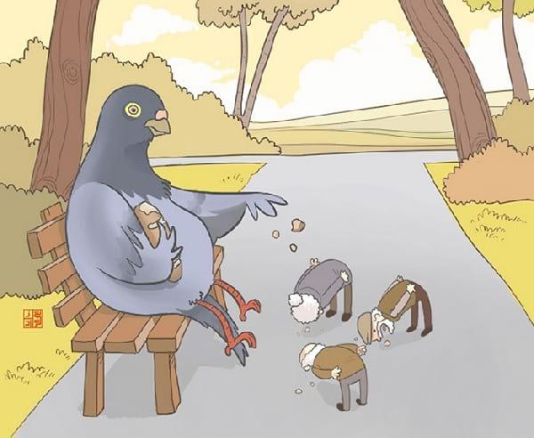 pigeon-qui-donne-a-manger-aux-humains