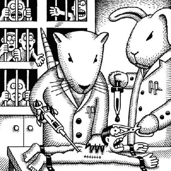 rat-qu-fait-expérience-sur-humain