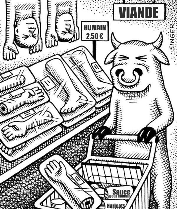 une vache qui fait ses courses dans le rayon viande humaine