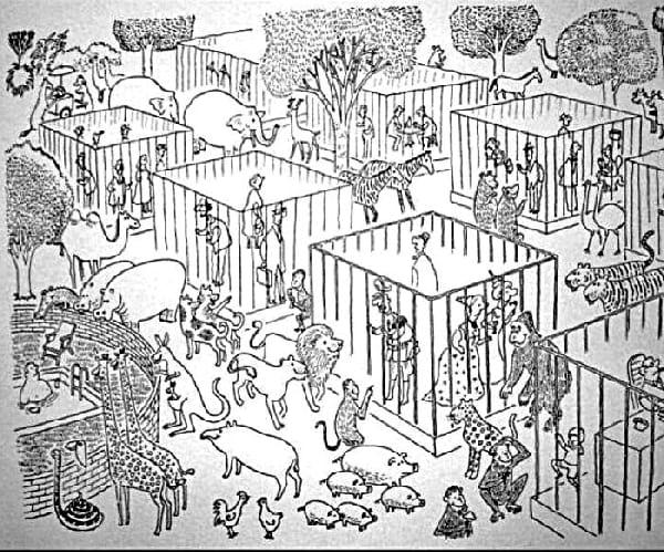 zoo-avec-des-humains