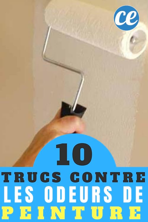 10 Trucs Pour éliminer Rapidement Les Odeurs De Peinture Dans La Maison