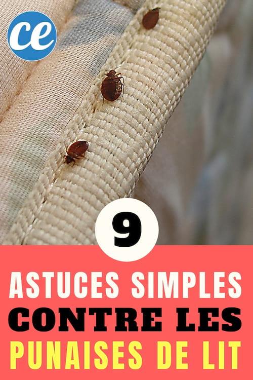 9 astuces efficaces pour se d barrasser des punaises de. Black Bedroom Furniture Sets. Home Design Ideas