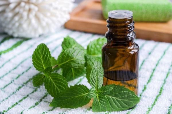 Flacon d'huile essentielle de menthe poivrée à côté de feuilles de menthe