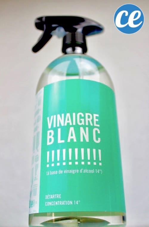 Une bouteille spray de vinaigre blanc.