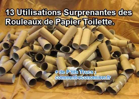 utilisations surprenantes des rouleaux de papier toilettes terminés