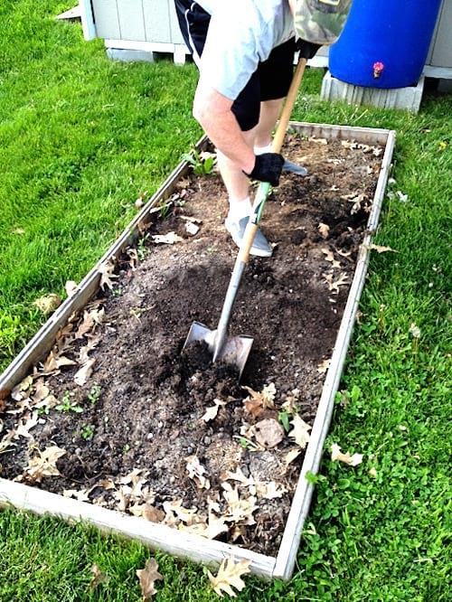 préparer le carré potager à l'automne