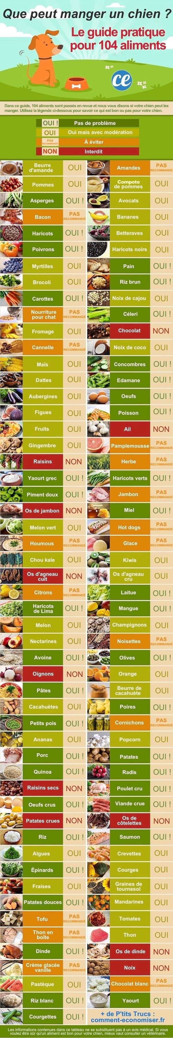 le guide complet pour savoir ce que peut manger un chien pour être en bonne santé