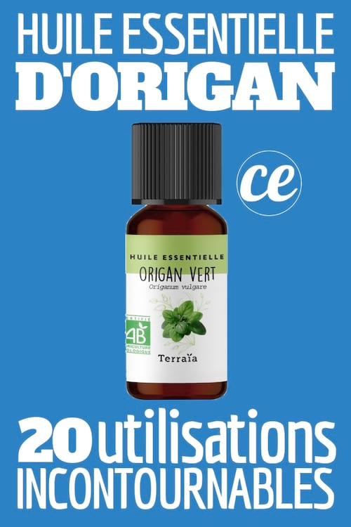 Découvrez les 20 utilisations étonnantes et les puissants bienfaits naturels de l'huile essentielle d'origan.