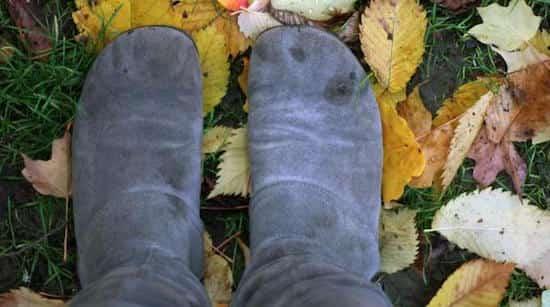 nettoyer chaussures daim