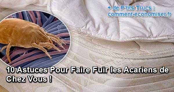 10 Astuces Pour Faire Fuir Les Acariens De Chez Vous