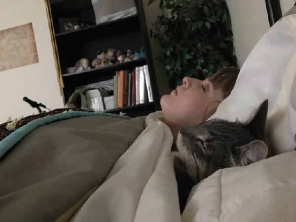 chat-qui-dort-dans-le-lit
