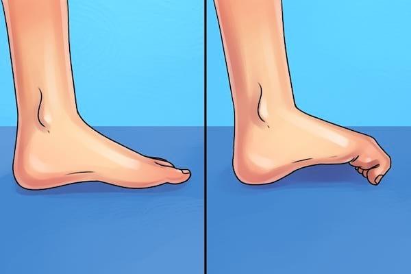 Exercice   de stimulation des orteils pour soulager les douleurs au genou, pied, hanche