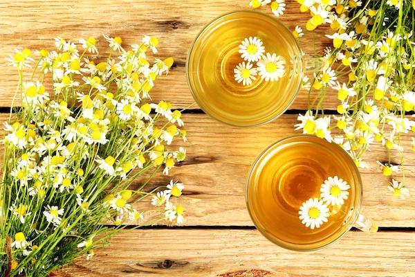 buvez une tisane de camomille pour soulager les règles douloureuses