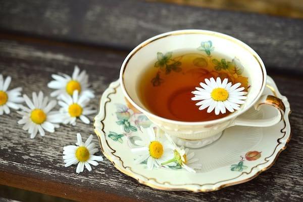 découvrez les bienfaits du thé vert sur le sommeil