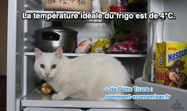 température idéale du frigo