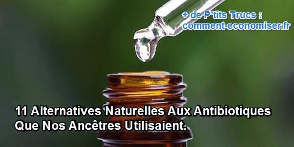 Quels sont les produits naturels qui peuvent remplacer les antibiotiques modernes ?