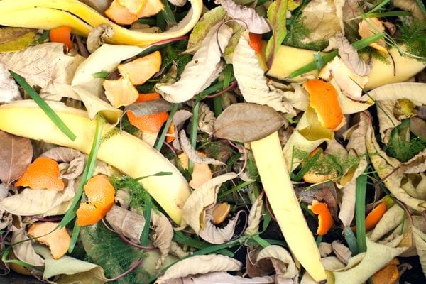 mettre des peaux d'orange dans le compost