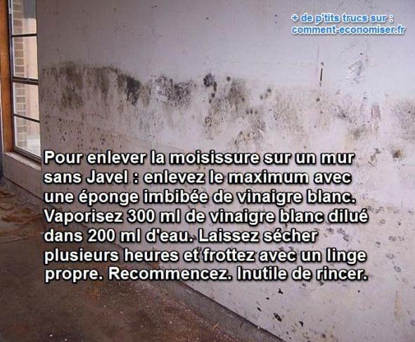 le vinaigre blanc nettoie la moisissure des murs