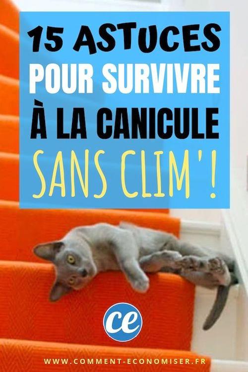 Les 15 Meilleures Astuces Pour Survivre à La Canicule SANS Climatisation.