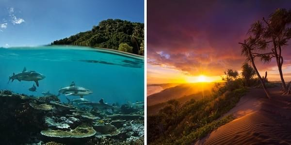 À gauche des requins dans l'eau transparente et à droite un couché de soleil aux Fidji