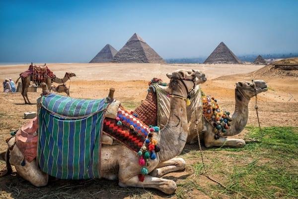 Ils y a des pyramides avec des chameaux en premier plan au sahara