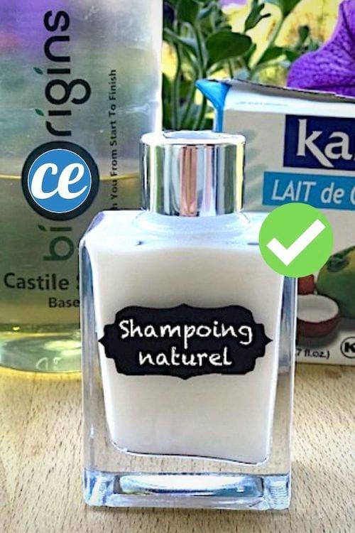 la recette du shampoing qui sent bon et qui mousse pr t. Black Bedroom Furniture Sets. Home Design Ideas