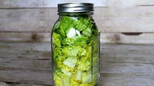 comment-conserver-salade-verte-longtemps