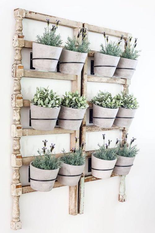 Douze pot de fleurs qui sont accrochés au mur