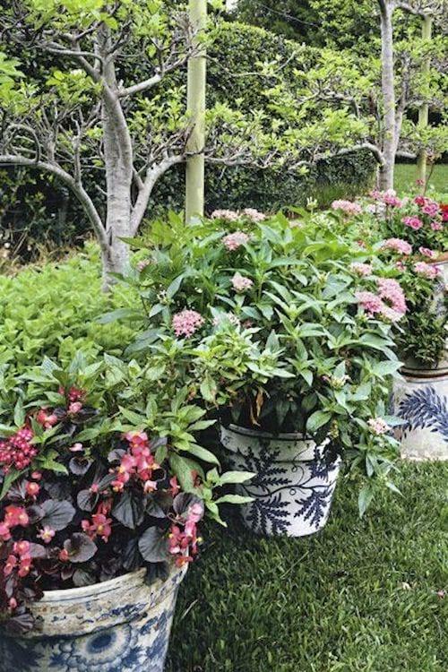 Des pots de fleurs contenant des graphiques