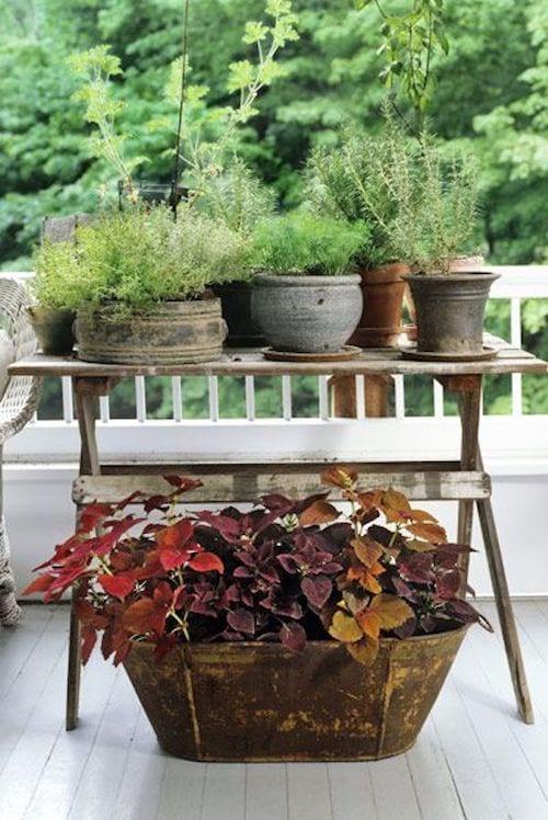 Des pots de fleurs posés sur une table