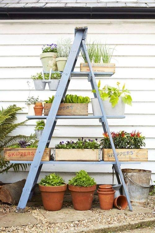 Une échelle recyclée pour faire un jardin en pots