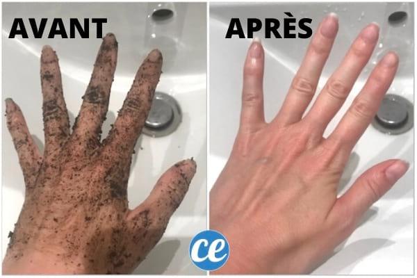 mains pleine de terre avant après nettoyage au citron