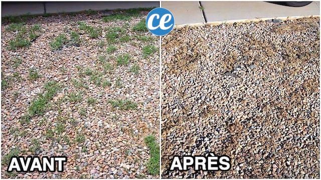 Enlever mauvaises herbes dans une cour gravillonnée