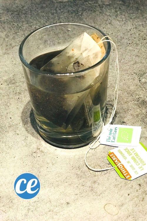 Deux sachets de thé conservés usagés dans un petit verre d'eau