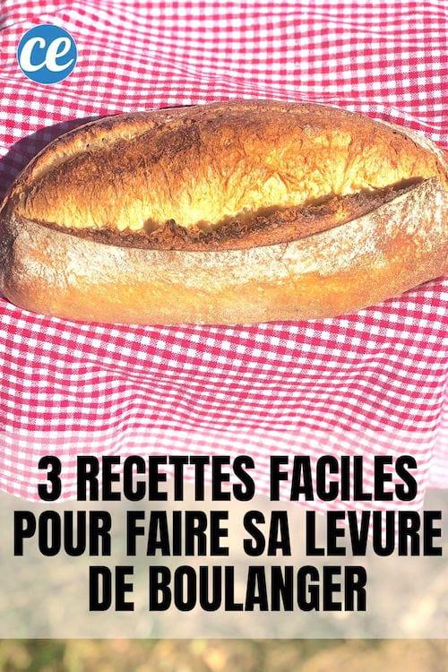 Du pain fait maison avec de la levure de boulanger maison