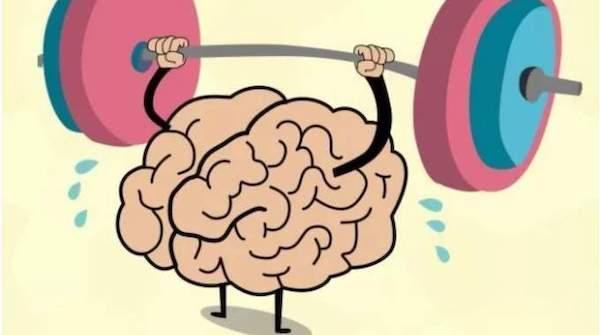 Disegno di un cervello che fa manubri