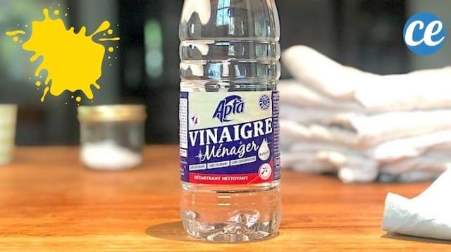 5 Astuces Vinaigre Blanc Pour Éliminer Toutes les Taches Sur Vos Vêtements.