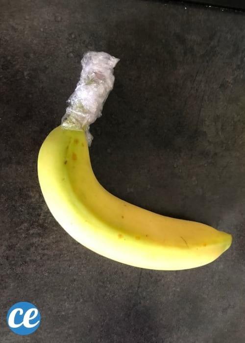 banane seule avec la tige enveloppée