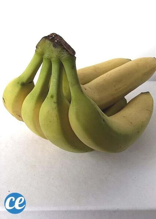 régime de banane verte