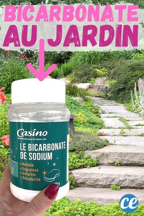 bicarbonate et ses utilisations dans le jardin potager