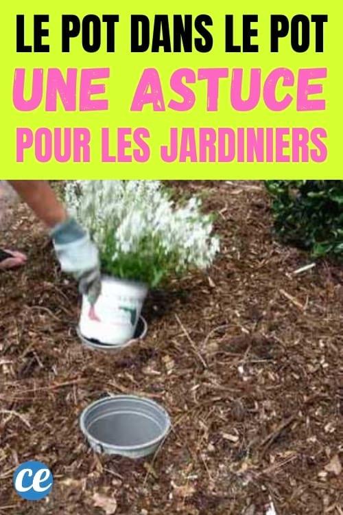 pot de fleur mis dans un autre pot de fleur dans le jardin