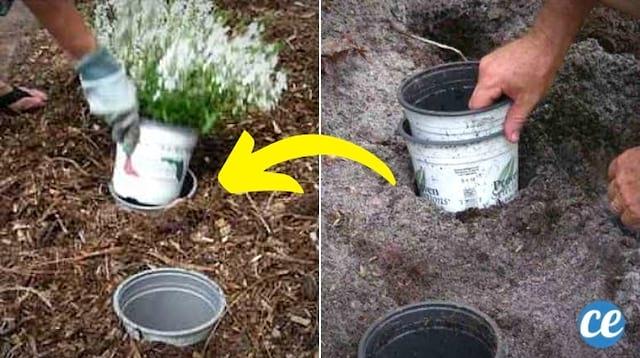 Des pots de fleurs dans des trous pour les changer facilement de place dans le jardin