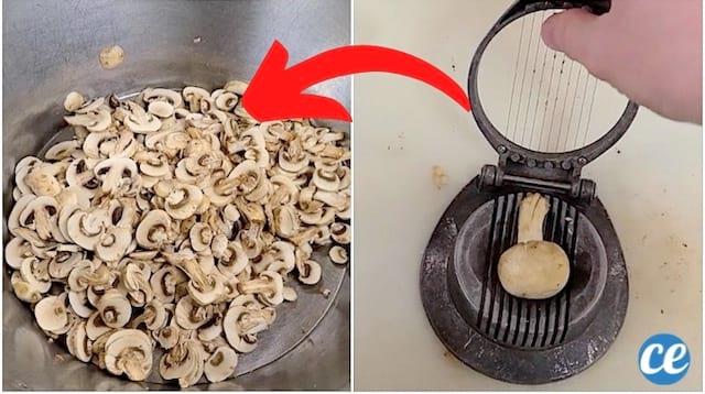 Comment couper des champignons avec un coup-oeufs pour gagner du temps