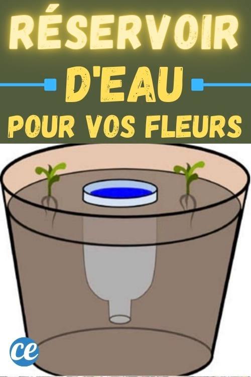 réservoir d'eau pour les fleurs avec une bouteille