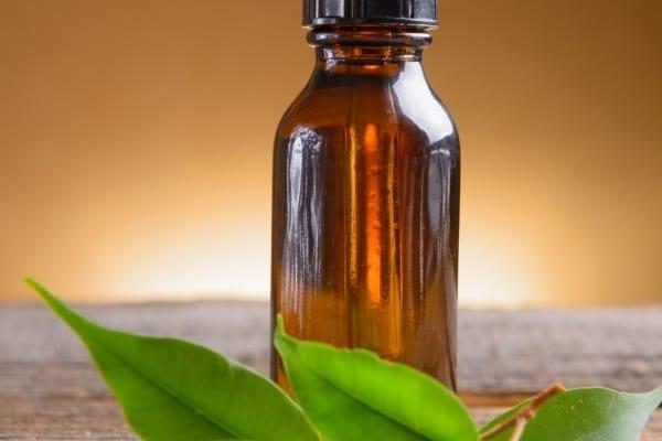Un flacon d'huile essentielle de camphre posé sur une table pour faire fuir les mouches